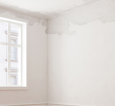 rising damp on ceiling and wall in house